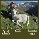 AK105Sheep